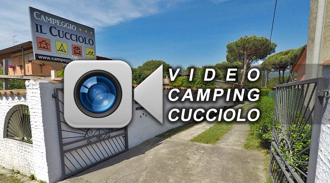 Video Camping Cucciolo